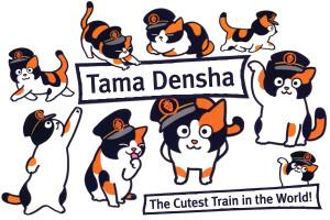 web-tama-train-03