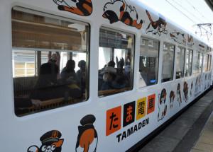 web-tama-train-07