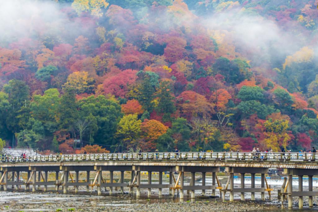 Arashiyama | Kyoto