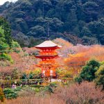 Kyoto Japan Travel Photography Slideshow